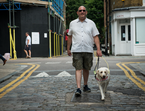 Myth Busting Series: Assistance Dogs